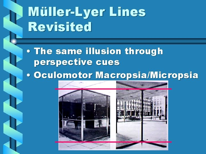 Müller-Lyer Lines Revisited • The same illusion through perspective cues • Oculomotor Macropsia/Micropsia
