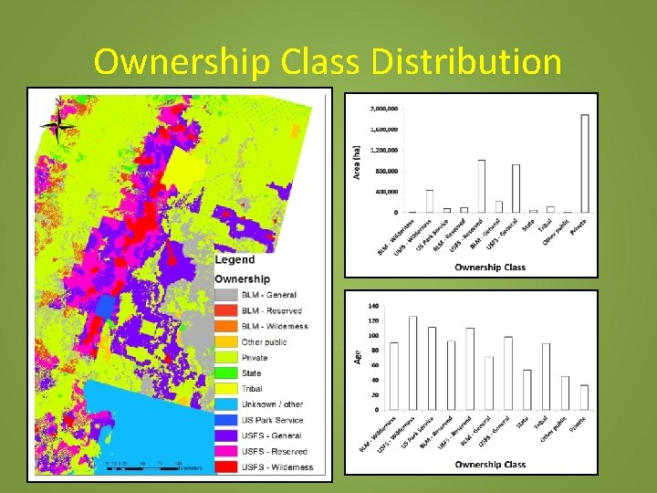 Ownership Class Distribution