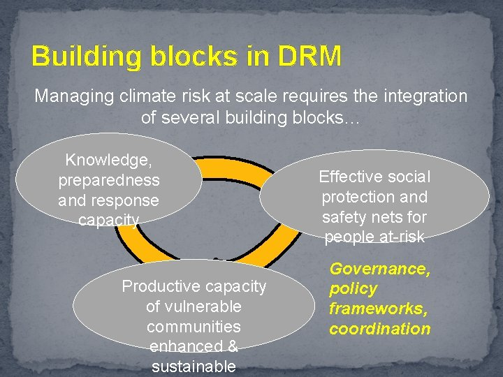 Building blocks in DRM Managing climate risk at scale requires the integration of several
