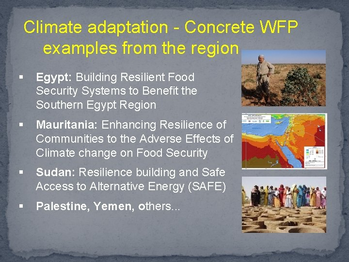 Climate adaptation - Concrete WFP examples from the region § Egypt: Building Resilient Food