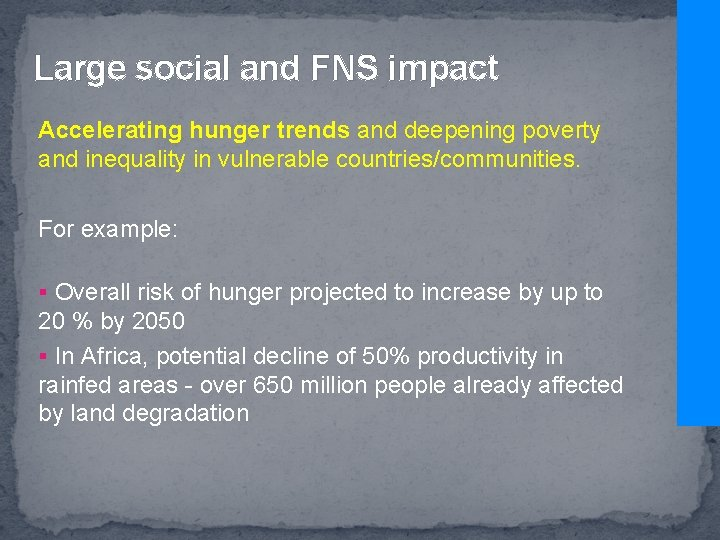 Large social and FNS impact Accelerating hunger trends and deepening poverty and inequality in