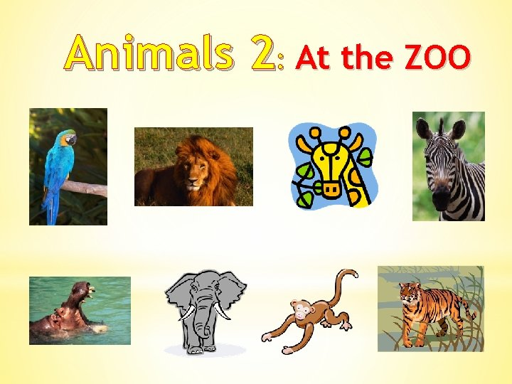 Animals 2: At the ZOO