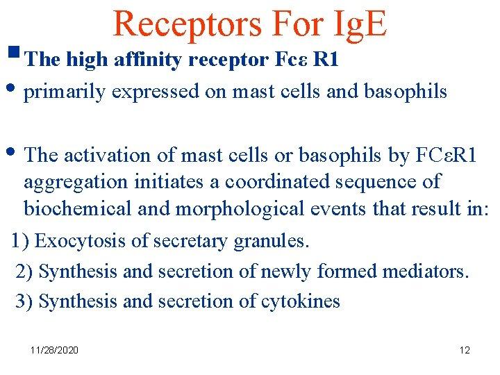 Receptors For Ig. E §The high affinity receptor Fcε R 1 • primarily expressed