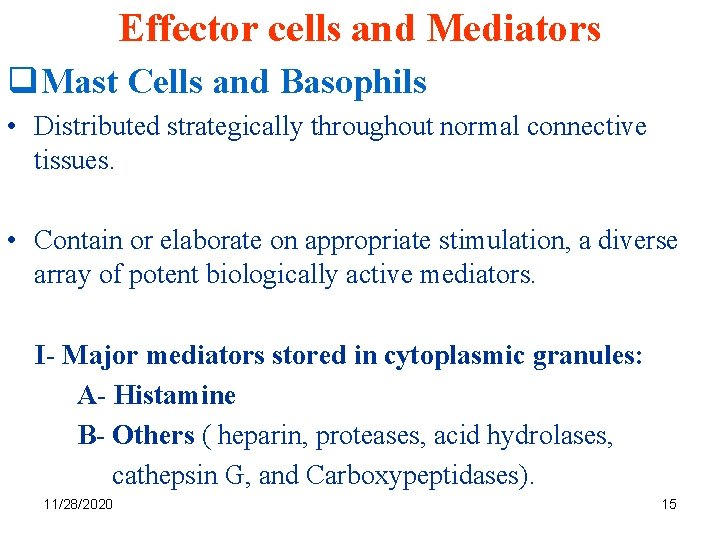 Effector cells and Mediators q. Mast Cells and Basophils • Distributed strategically throughout normal