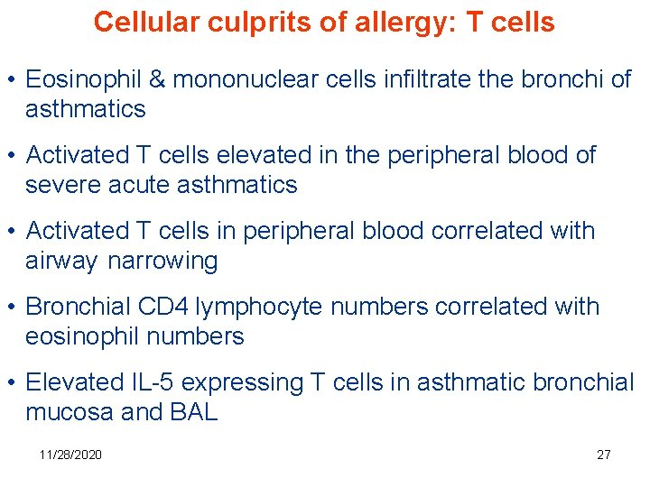 Cellular culprits of allergy: T cells • Eosinophil & mononuclear cells infiltrate the bronchi