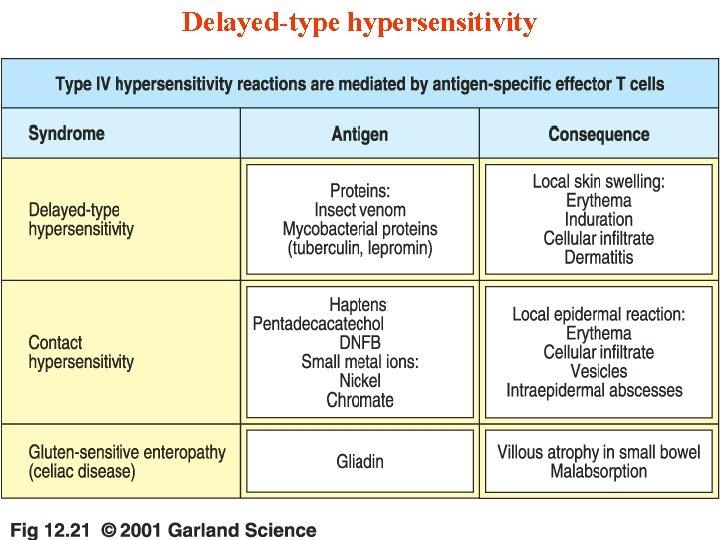 Delayed-type hypersensitivity 11/28/2020 47