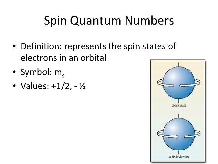 Spin Quantum Numbers • Definition: represents the spin states of electrons in an orbital