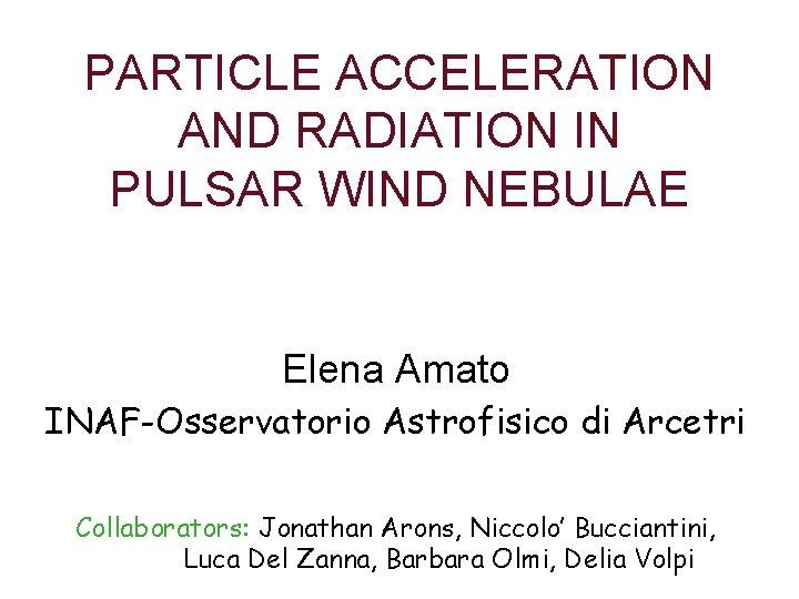 PARTICLE ACCELERATION AND RADIATION IN PULSAR WIND NEBULAE Elena Amato INAF-Osservatorio Astrofisico di Arcetri