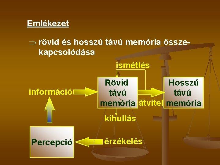 Emlékezet Þ rövid és hosszú távú memória össze- kapcsolódása ismétlés információ Rövid Hosszú távú