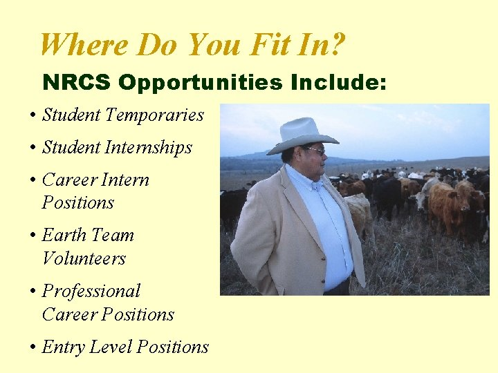 Where Do You Fit In? NRCS Opportunities Include: • Student Temporaries • Student Internships