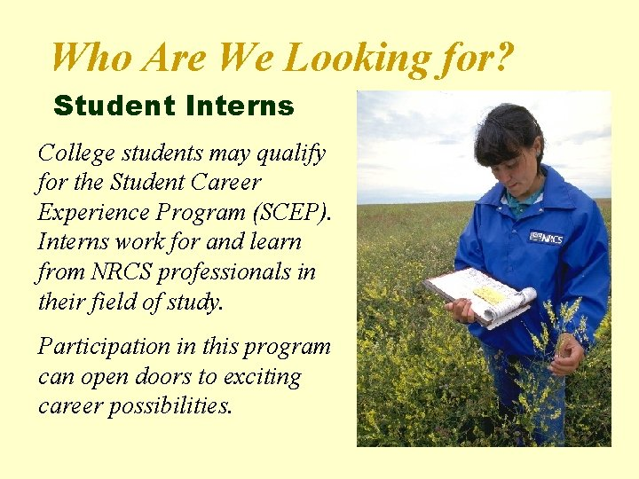 Who Are We Looking for? Student Interns College students may qualify for the Student