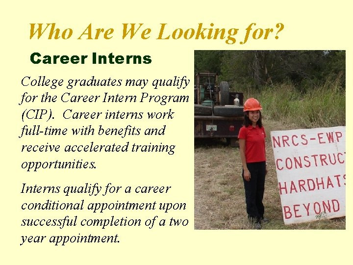 Who Are We Looking for? Career Interns College graduates may qualify for the Career