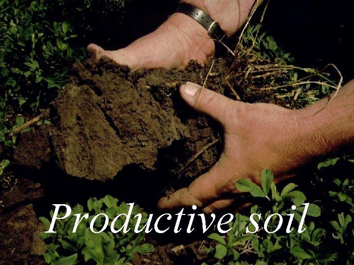 Productive soil