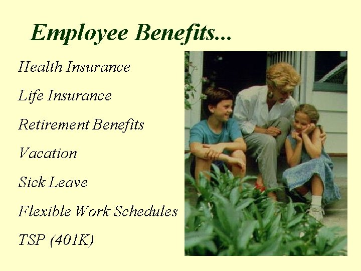 Employee Benefits. . . Health Insurance Life Insurance Retirement Benefits Vacation Sick Leave Flexible