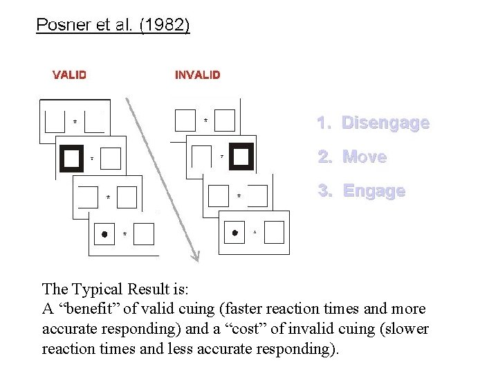 """The Typical Result is: A """"benefit"""" of valid cuing (faster reaction times and more"""