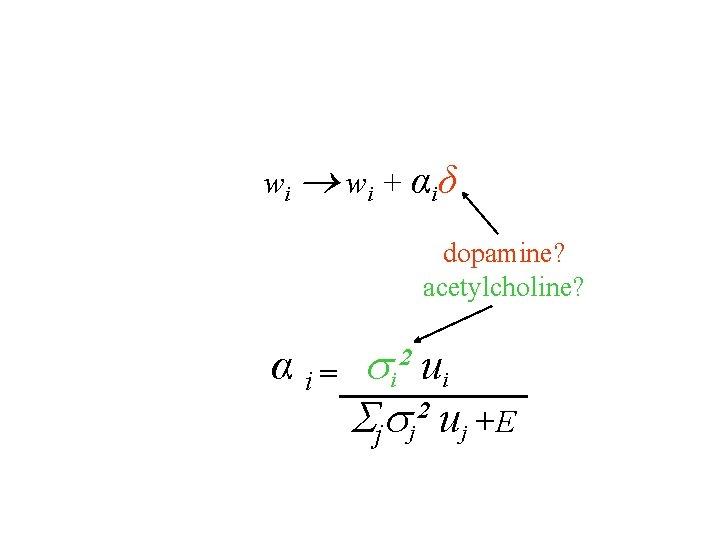 w i + α iδ dopamine? acetylcholine? α i = i² ui j j²