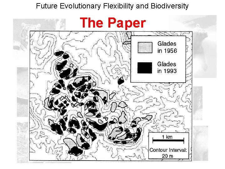 Future Evolutionary Flexibility and Biodiversity The Paper