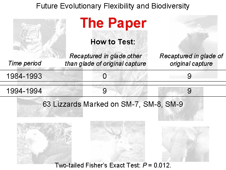 Future Evolutionary Flexibility and Biodiversity The Paper How to Test: Time period Recaptured in