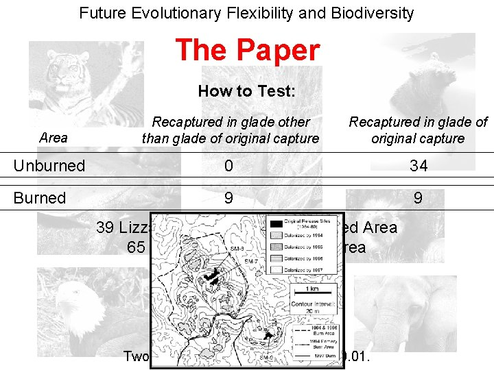 Future Evolutionary Flexibility and Biodiversity The Paper How to Test: Recaptured in glade other