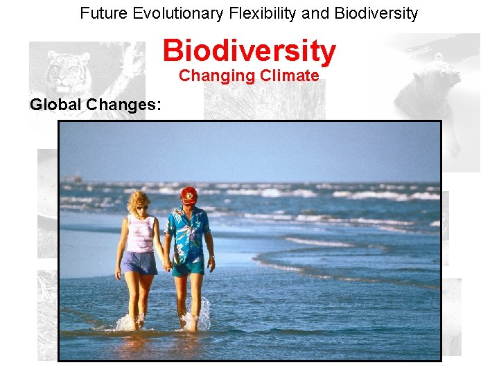 Future Evolutionary Flexibility and Biodiversity Changing Climate Global Changes: