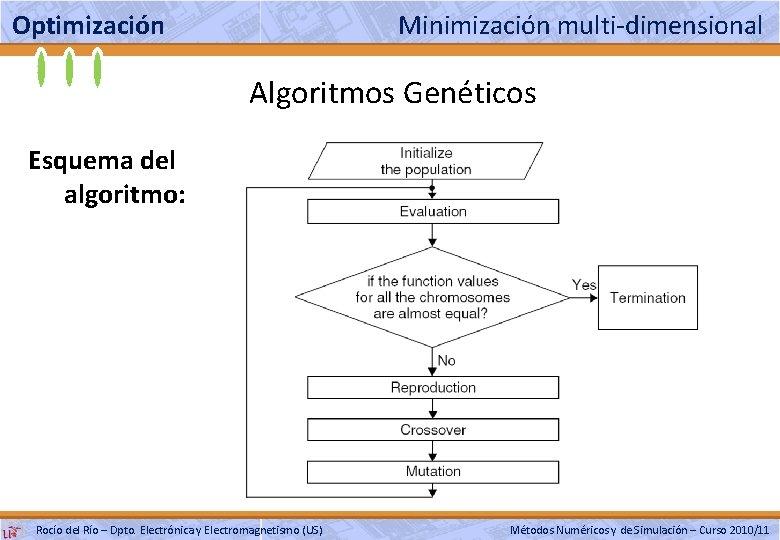 Optimización Minimización multi-dimensional Algoritmos Genéticos Esquema del algoritmo: Rocío del Río – Dpto. Electrónica