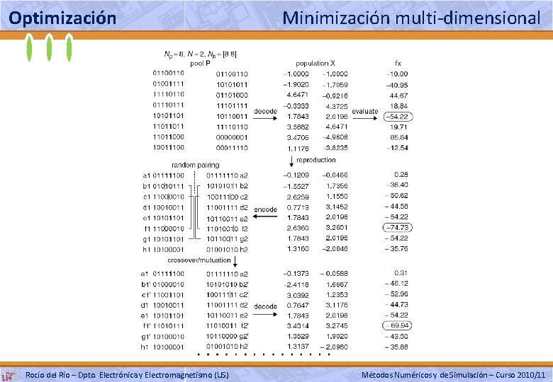 Optimización Rocío del Río – Dpto. Electrónica y Electromagnetismo (US) Minimización multi-dimensional Métodos Numéricos