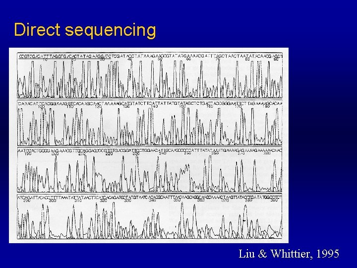 Direct sequencing Liu & Whittier, 1995