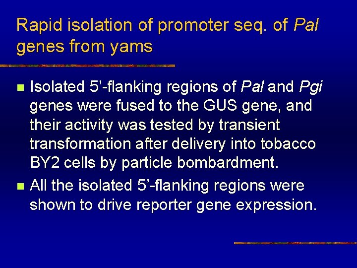 Rapid isolation of promoter seq. of Pal genes from yams n n Isolated 5'-flanking