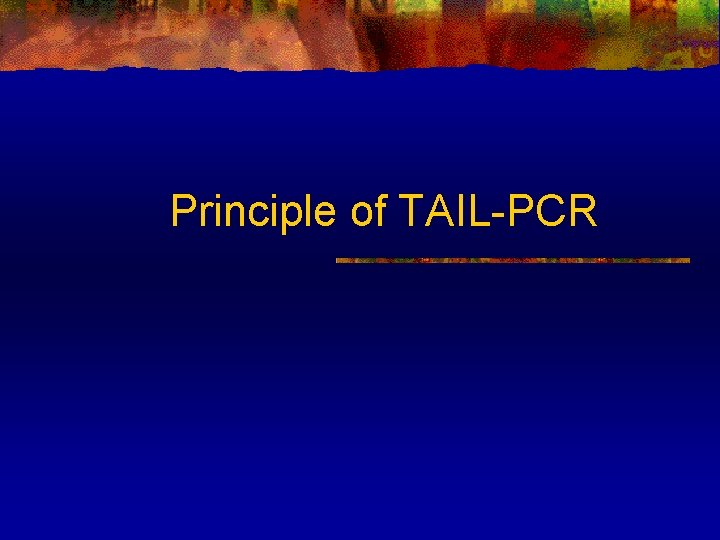 Principle of TAIL-PCR