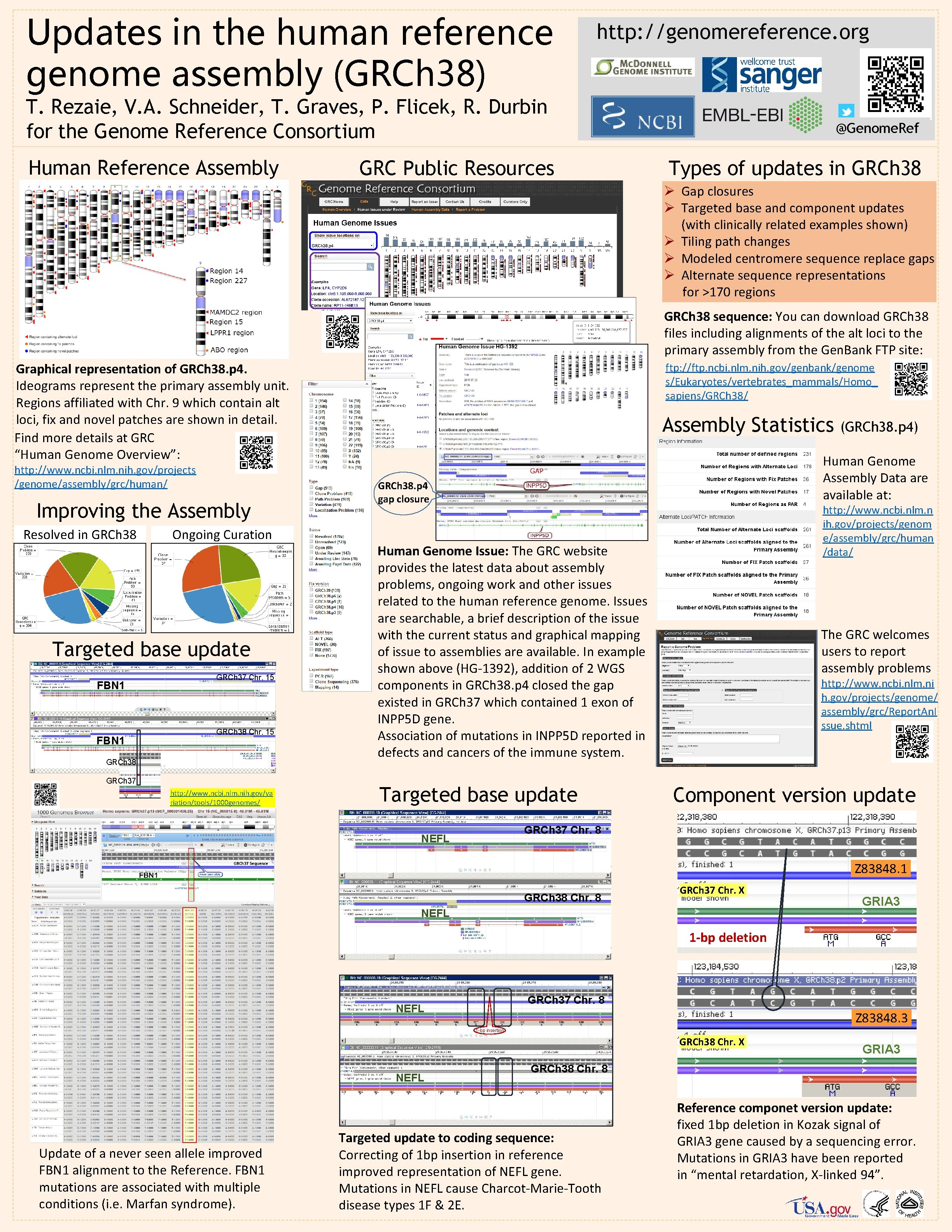 Updates in the human reference genome assembly (GRCh 38) http: //genomereference. org T. Rezaie,