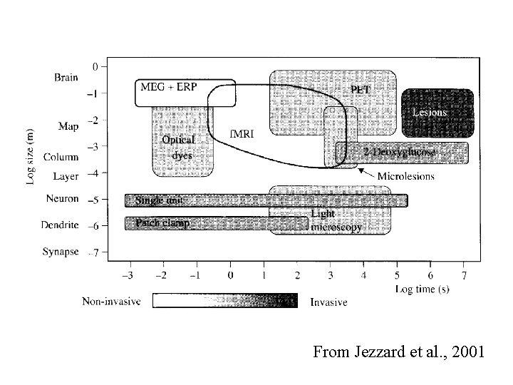 From Jezzard et al. , 2001