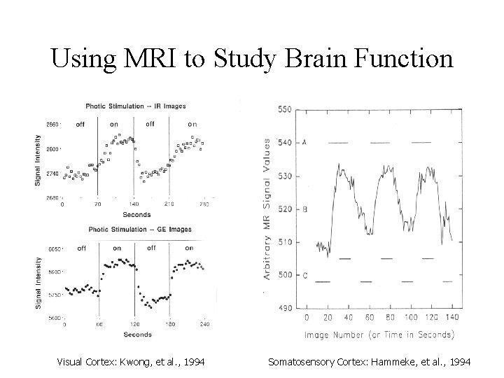 Using MRI to Study Brain Function Visual Cortex: Kwong, et al. , 1994 Somatosensory