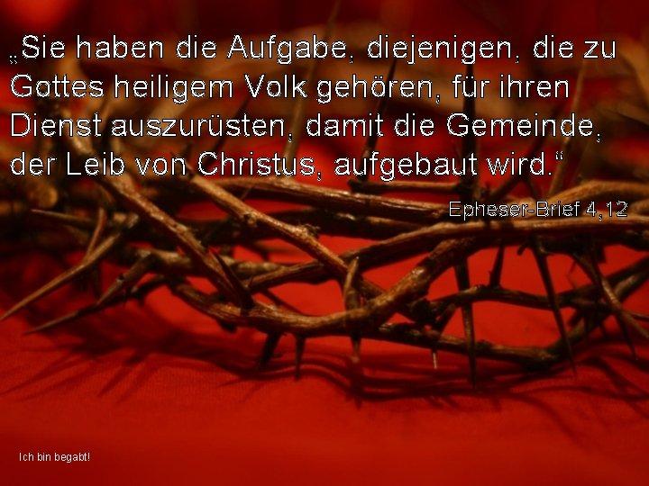 """""""Sie haben die Aufgabe, diejenigen, die zu Gottes heiligem Volk gehören, für ihren Dienst"""