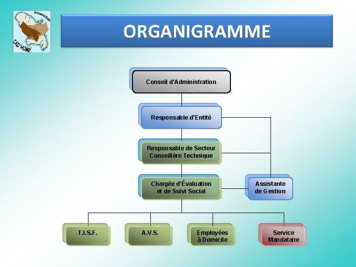 ORGANIGRAMME Conseil d'Administration Responsable d'Entité Responsable de Secteur Conseillère Technique Chargée d'Évaluation et de