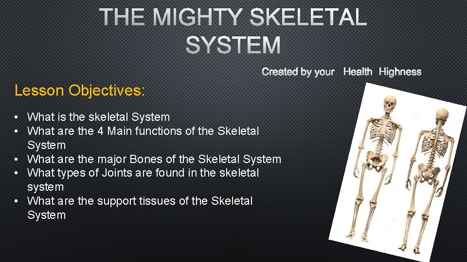 THE MIGHTY SKELETAL SYSTEM CREATED BY YOUR HEALTH HIGHNESS Lesson Objectives: • What is