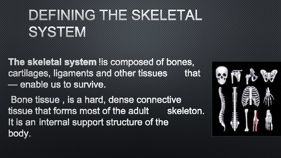 DEFINING THE SKELETAL SYSTEM