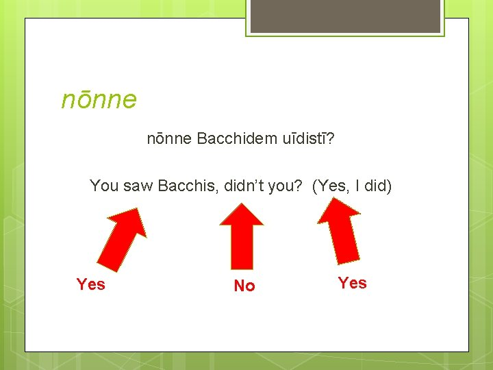nōnne Bacchidem uīdistī? You saw Bacchis, didn't you? (Yes, I did) Yes No Yes