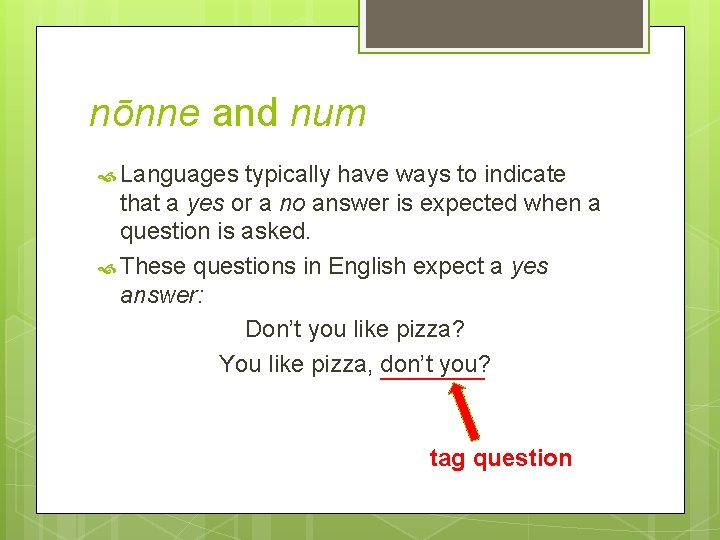 nōnne and num Languages typically have ways to indicate that a yes or a