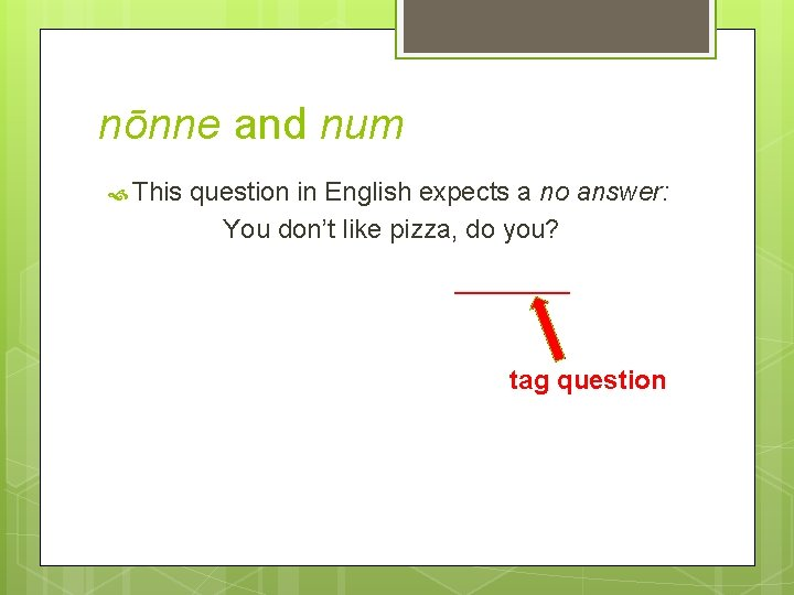 nōnne and num This question in English expects a no answer: You don't like
