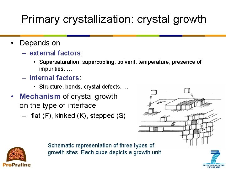 Primary crystallization: crystal growth • Depends on – external factors: • Supersaturation, supercooling, solvent,