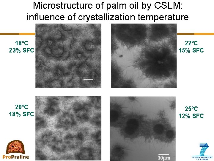 Microstructure of palm oil by CSLM: influence of crystallization temperature 18°C 23% SFC 22°C