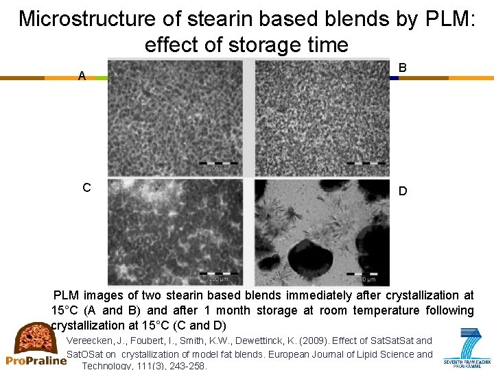 Microstructure of stearin based blends by PLM: effect of storage time A C B