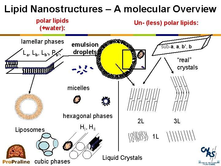 Lipid Nanostructures – A molecular Overview polar lipids (+water): lamellar phases Un- (less) polar