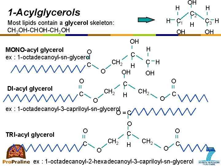 H 1 -Acylglycerols H C 1 Most lipids contain a glycerol skeleton: CH 2