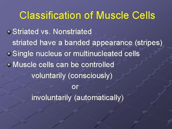 Classification of Muscle Cells Striated vs. Nonstriated have a banded appearance (stripes) Single nucleus