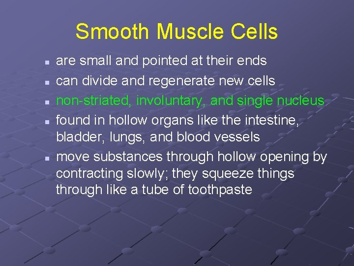 Smooth Muscle Cells n n n are small and pointed at their ends can