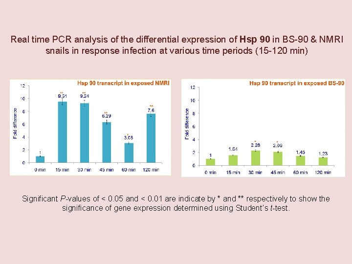 Real time PCR analysis of the differential expression of Hsp 90 in BS-90 &