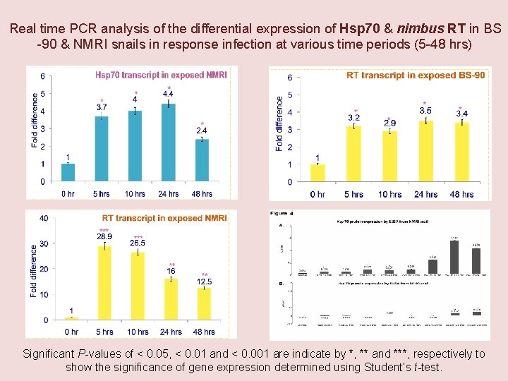 Real time PCR analysis of the differential expression of Hsp 70 & nimbus RT