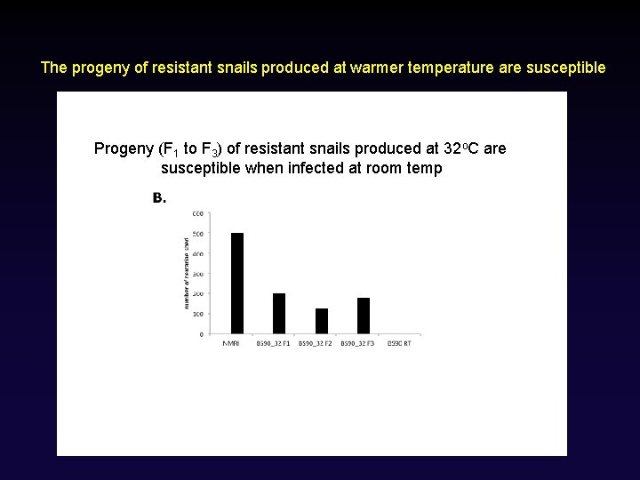 The progeny of resistant snails produced at warmer temperature are susceptible Progeny (F 1