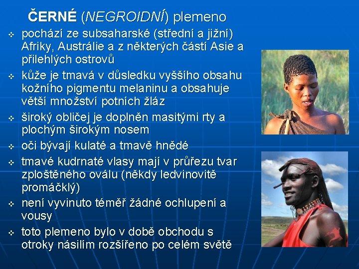 ČERNÉ (NEGROIDNÍ) plemeno v v v v pochází ze subsaharské (střední a jižní) Afriky,